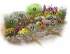 A garden to attract birds and butterflies.Garden Plan to Attract Birds and ButterfliesBrought to you by Lowe's Creative Ideas. Enjoy a beautiful garden bed full of color and texture. As a bonus, you'll attract birds and butterflies, too. Click to learn more...