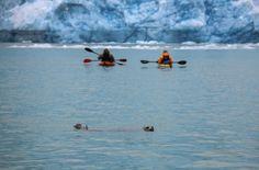 Making new friends in Alaska