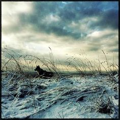 Photo of the day by Lee Atwell - hipstography, Oggl Rasputin, Best Smartphone, Film, United States, Waves, Mountains, Street, Outdoor, Beautiful