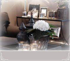 Tomines hjem: Stuen vår