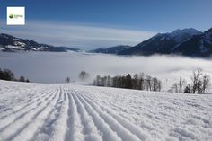 Familienskigebiet Goldegg am See ist ideal für Beginnen und Familien. Snow, Outdoor, Ski Trips, Winter Vacations, Family Vacations, Landscape, Outdoors, Outdoor Games, The Great Outdoors
