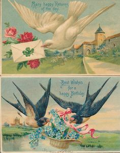 Nice Antique Lot of 2 Vintage Birds & Flowers bird Circa 1910 Postcards-ccc718