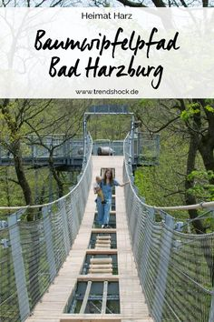 Harz tree top path and lynx feeding in Bad Harzburg You can find Lynx and more on our website.Harz tree top path and lynx feeding in Bad Harzburg Weekend Trips, Day Trips, Parc National, National Parks, Lynx, Travel Around The World, Around The Worlds, Bad Gyal, Bad Bunny