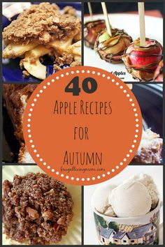 Apple season is upon us!! Check out these 40 Apple Recipes for Autumn