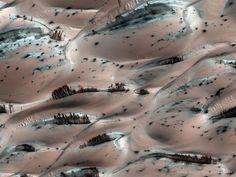 عکس شگفت انگیز از درختان سیاره مریخ!... مگر مریخ درخت دارد ؟ ای کاش می توانستیم پاسخی مثبت به این پرسش بدهیم اما باید گفت که خیر ، متاسفانه مریخ درخت ندارد اما تصویری که در این مطلب از مریخ مشاهده می کنید نمایی زیبا از دسته هایی از رگه های قهوهای تیره اند که از آب شدن یخِ تلماسه های صورتی رنگی که با شبنمِ رنگ روشن پوشیده شده اند پدید آمده اند.این عکس در آوریل دوهزار و هشت توسط مدارگرد شناسایی بهرام و از نقطه ای نزدیک به قطب شمال بهرام گرفته شده