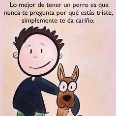 Lo mejor de tener un perro es que nunca te pregunta por qué estás triste, simplemente te da cariño.