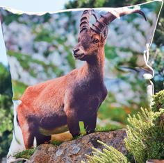Steinbock-Print auf Kissenhülle von PROFLAX. Country Style, Capricorn, Country, Rustic Style
