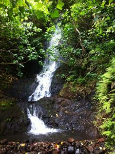 Old Pali Highway Trail & Likeke Falls
