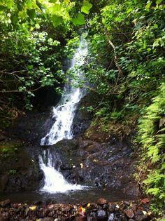 Old Pali Highway Trail & Likeke Falls