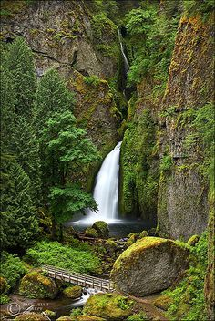 Wahclella in full Spring green, Oregon. Wahclella Falls is situated along the Columbia River Gorge in Oregon. Oh The Places You'll Go, Places To Travel, Places To Visit, Beautiful Waterfalls, Beautiful Landscapes, Oregon Waterfalls, Oregon Travel, The Great Outdoors, Nature Photography