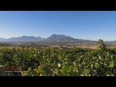 Fairview Wine & Cheese Farm Stellenbosch South Africa - Africa Travel Channel