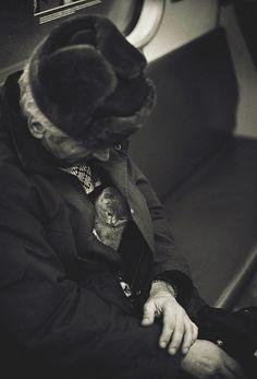 cat hidden in man's coat http://scrapbookofduke.posterous.com/lovely-photo-of-kitten-and-old-woman-on-train