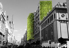 Madrid Is Covering Itself In Plants To Help Fight Rising Temperatures  Vacant lots, city squares, a former highway, and even regular city streets are going to be filled up with trees and plants—everywhere you look.
