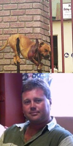 STEFAN KEYTER-how about your ugly head on a pole...JUSTICE FOR THEUNS! The Staffordshire Bull Terrier murdered! Shot and hung on 2 poles as a Trophy!