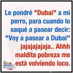 Funny Spanish Memes, Spanish Humor, Funny Memes, Pepito Jokes, Girl And Dog, Haha, Life Quotes, Informa, Sunshine