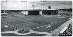 Minnesota Twins - 1960's  Metropolitan Stadium