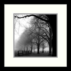 Shop for Harold Silverman 'Black and White Morning' Framed Art Print 13 x 13-inch. Get free delivery at Overstock.com - Your Online Art Gallery Store! Get 5% in rewards with Club O!