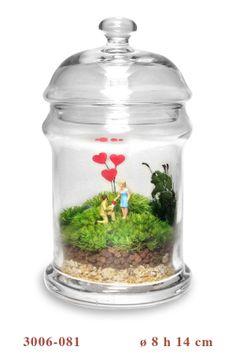Terrarium Art - Piccoli mondi in vetro Mini Terrarium, Garden Terrarium, Mini Bonsai, Aquaponics, Glass Art, Succulents, Miniatures, Images, Garden Ideas