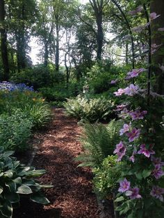 Check out these great DIY garden paths for your backyard. Here, we've rounded stirring a few of our favorite ideas for creative DIY backyard . * Get more details by click the image. Diy Garden, Garden Cottage, Shade Garden, Dream Garden, Garden Paths, Backyard Shade, Garden Art, Forest Garden, Woodland Garden