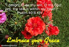 Embrace Your Grace - @embracegracetoo: I delight to do thy will, O my God: yea, thy law i...