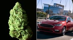 Cops Keep Finding Weed Stashed in Brand-New Ford Fusions - VICE