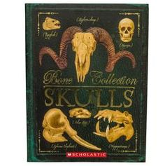 Bones Collection  - Skulls