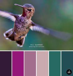 a hummingbird-inspired color palette // dark purple (aubergine), magenta… Bedroom Colour Palette, Colour Pallette, Colour Schemes, Color Combos, Color Magenta, Purple Color Palettes, World Of Color, Color Of Life, Paint Color Wheel