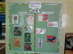 Living and Non-living Things Bulletin Board