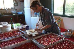 tabuleiros e tabuleiros de tomate confit {festim na Lapinha} | foto de Alice, irmã do noivo
