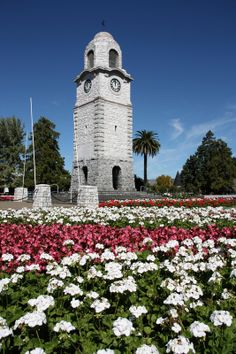 Blenheim, a town on New Zealand's South Island