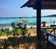 Sakarun Beach-Dugi Otok#Croatia     ( Fuente Instagram 📷 )