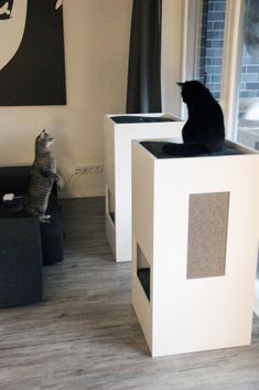 stylish self designed cat furniture.  - Cat Tower - Cat Toilette - climbing tree
