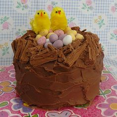 Easter Nest Cake with yummy chocolate ganache icing. mmmmmmmmm