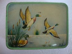 Rare Vintage Swimming Swan in the River Litho Print Tin Box