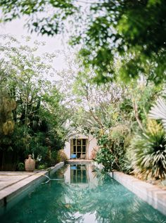 This lovely pool looks like it would be hard to keep clean with all that vegetation so close by. **