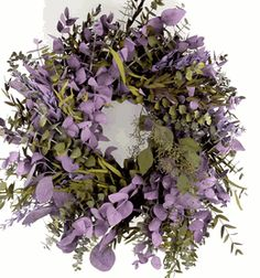 "Eucalyptus Wreaths 17"" Natural Preserved Kiwi & Lilac (Save 31%)"
