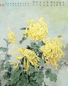Botanical Drawings, Botanical Art, Botanical Illustration, Illustration Art, Asian Flowers, Japanese Flowers, Japanese Painting, Chinese Painting, Chinoiserie