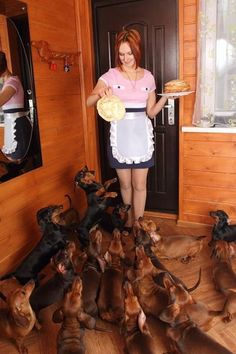 I can see me with this many! scary! Feeding time! #doxie #cute #dachshund +++ Love your puppies?? Visit our website now!
