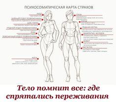 тело (700x614, 87Kb)