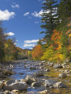 Swift River, White Mountains National Forest, New Hampshire, New England