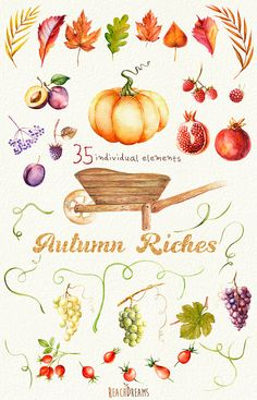 Autumn Harvest Watercolor clipart. Fall Halloween by ReachDreams