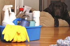 Best Cleaning Services for Home - Get professional & trustworthy maids for house cleaning services in Los Angeles. Call for house cleanout services Los Maid Cleaning Service, Office Cleaning Services, Cleaning Maid, Amway Home, House Maid, Clean Tile Grout, How To Make Bed, Plastic Laundry Basket, Cleaning Hacks