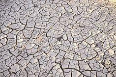 Deserto de Mojave - Cracked Earth in St Thomas   por Jim Sage