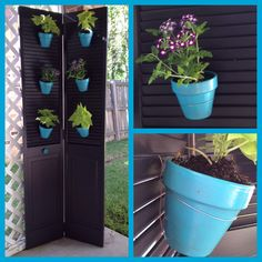 Old shutter closet door turned planter!! I painted an old closet door as well as some small terra cotta pots. Then I used wire threaded around the pot and through the drain hole to attach it to the door. After attaching the pot, then I planted the plants! (Also, because the planter is so top heavy, I attached it with the same wire to the lattice.)