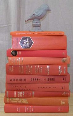 1965 ~ Vintage & Modern ORANGE Decorative Book Lot ~ Instant Library Books
