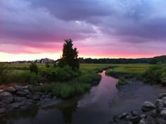 ~Hammonasset State Park~ in Madison, CT.      Credit Michelle Kiley, Friends of Hammonasset