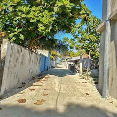 Street of Thinadhoo Maldives, Sidewalk, Street, Places, Instagram, The Maldives, Side Walkway, Walkway, Walkways
