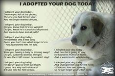 Just take a minute to read this, it's well worth it for animal lovers.