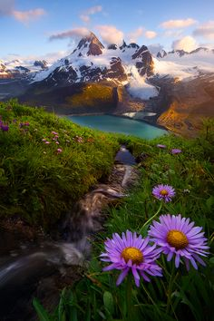 Added to Scenic photography ideas Collection in Photography Category Landscape Photos, Landscape Photography, Nature Photography, Beautiful World, Beautiful Places, Beautiful Pictures, All Nature, Amazing Nature, Nature Pictures
