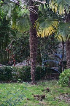 dans le jardin de breville Photo par Alain Jouenne - National Geographic Votre Plan
